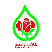 گلاب ربیع